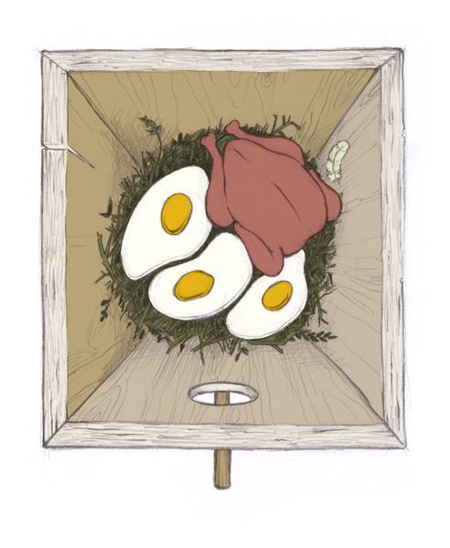 Eten uit de nestkast