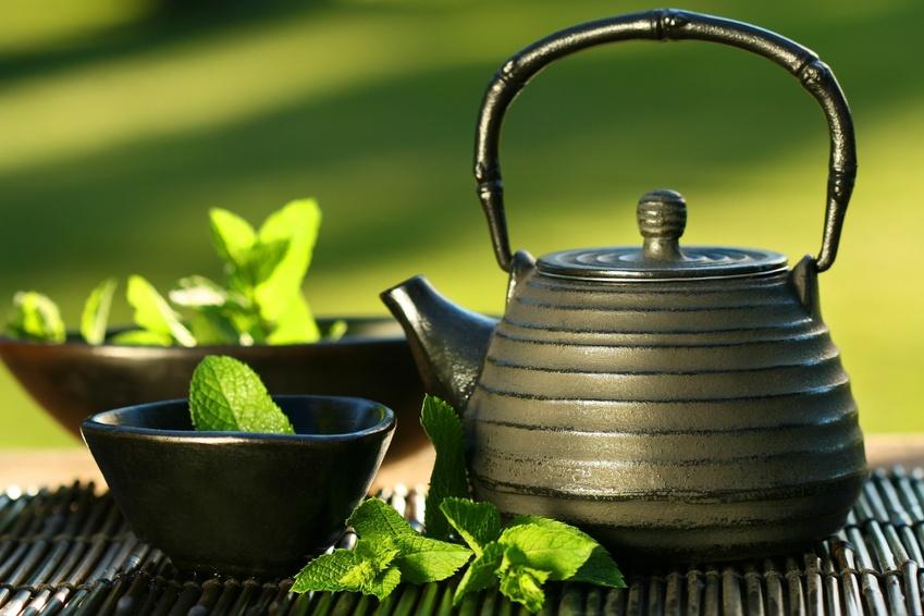 Alle voordelen van groene thee