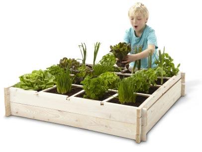 Tuinieren op een vierkante meter